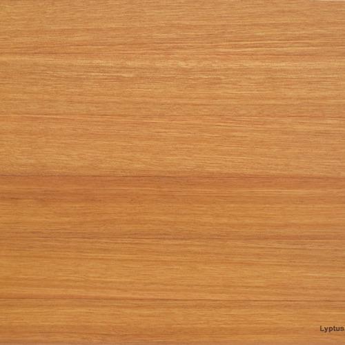 lyptus wood sample