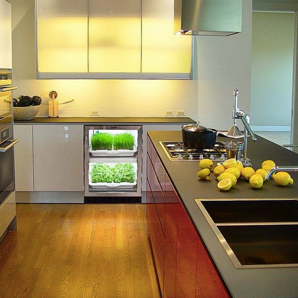 How Kitchen Designs Are Changing To Support Healthy Living Trends